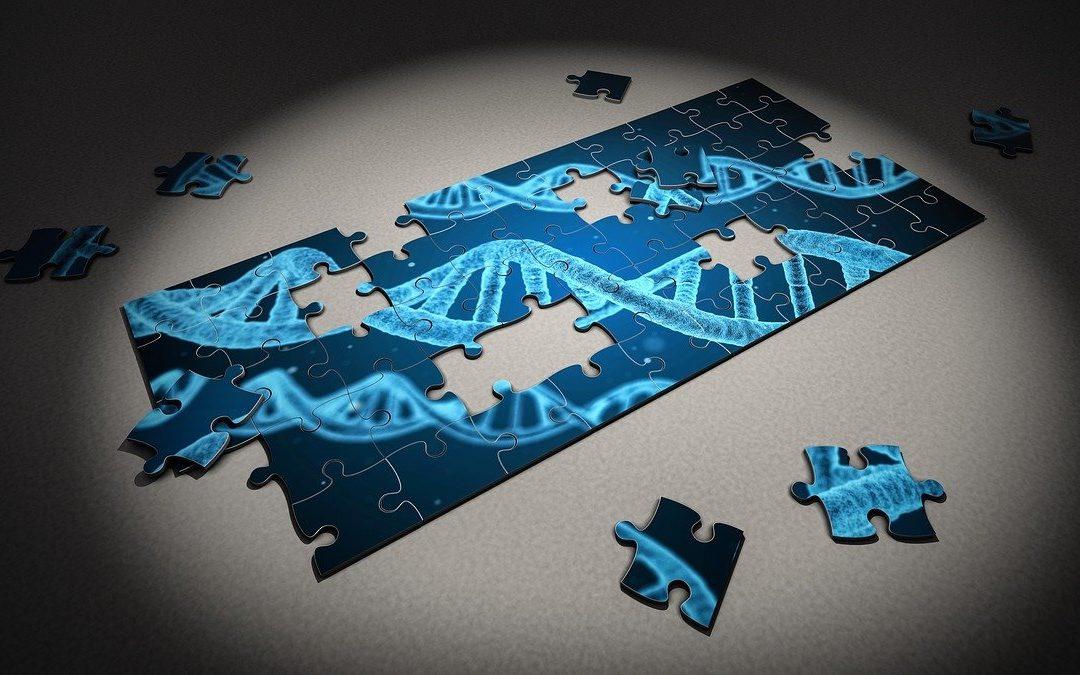 Test ADN Pour Retrouver Ses Ancêtres : Comment ça Marche ?